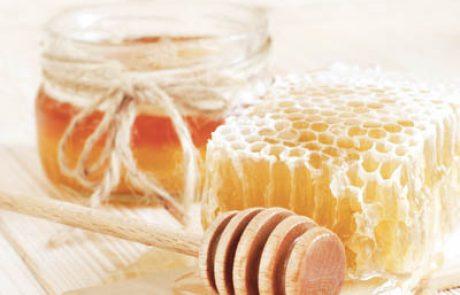 דבורים ואפיתרפיה